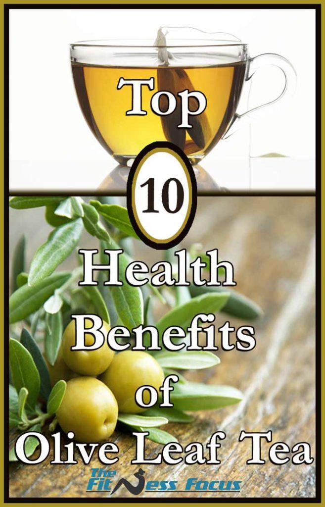 Top Ten 10 Health Benefits of Olive Leaf Tea