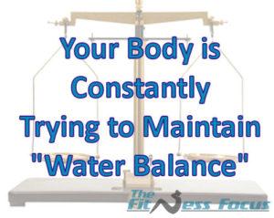 Body Maintaining Water Balance